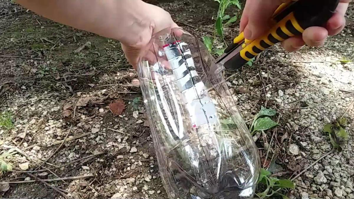Carefully cut the bottle with a box or utility knife.