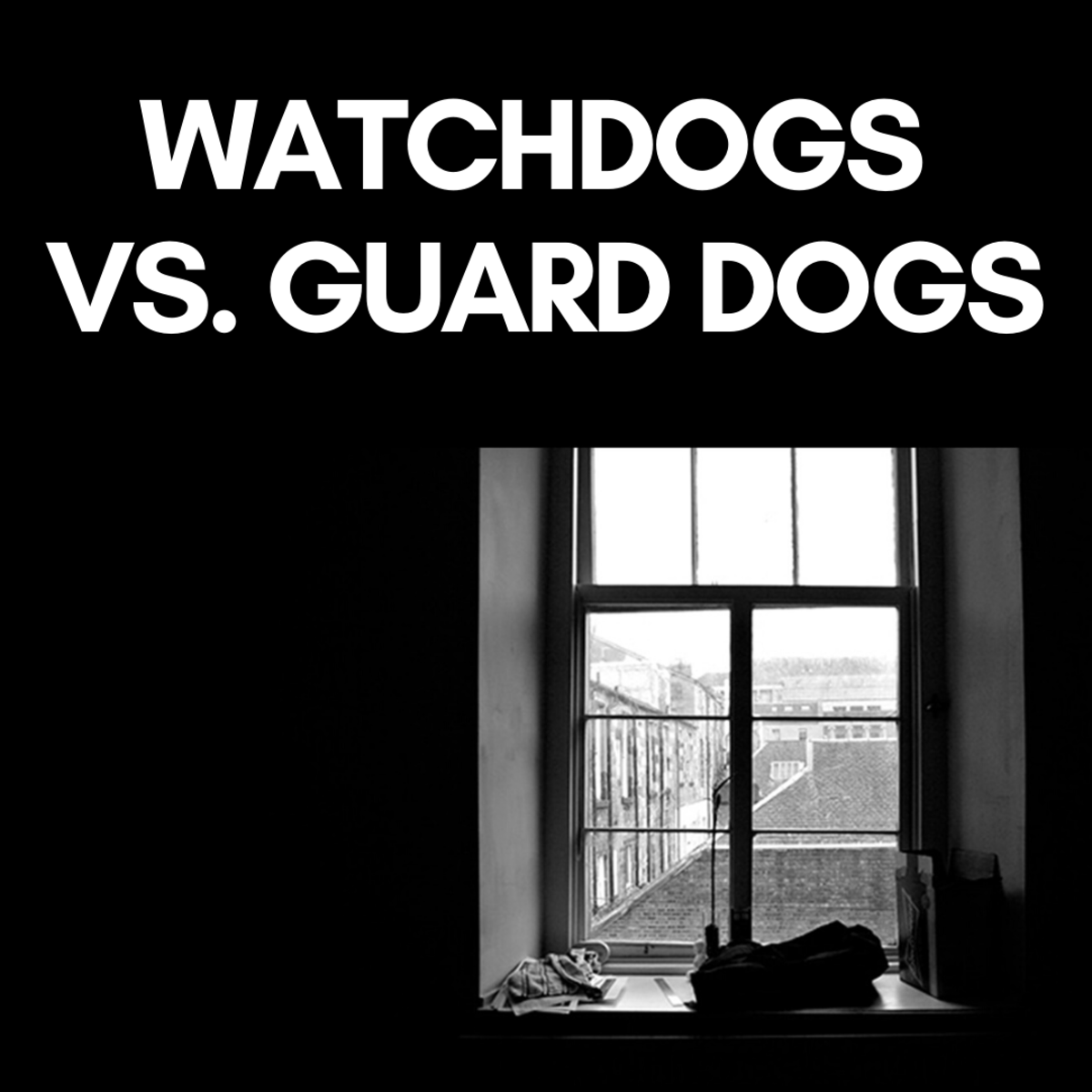 Small dogs generally make good watchdogs.