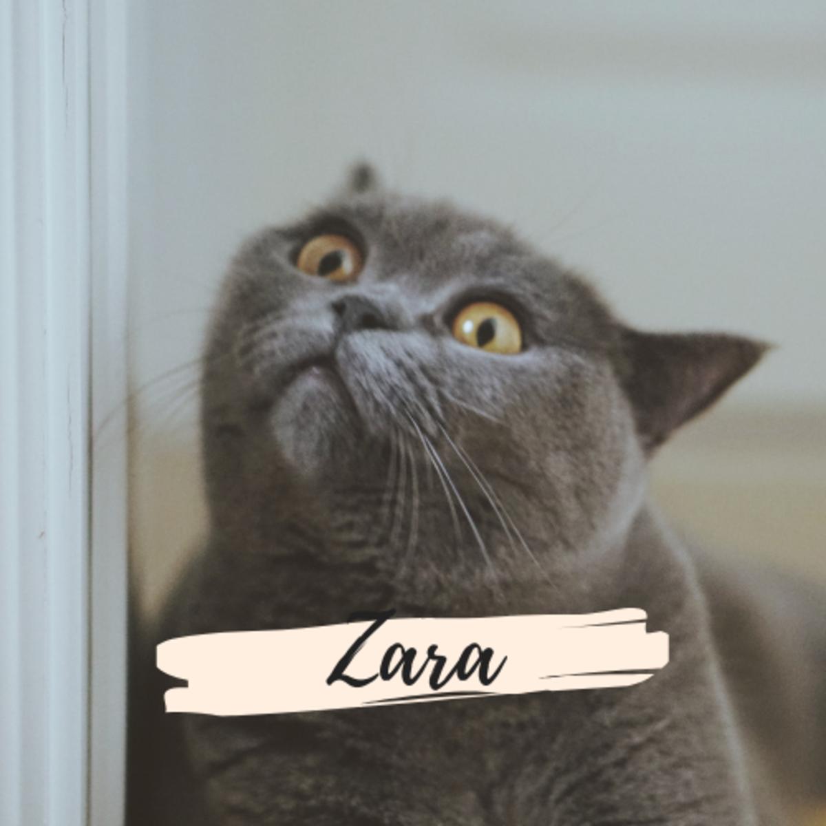 Is she a Zara?
