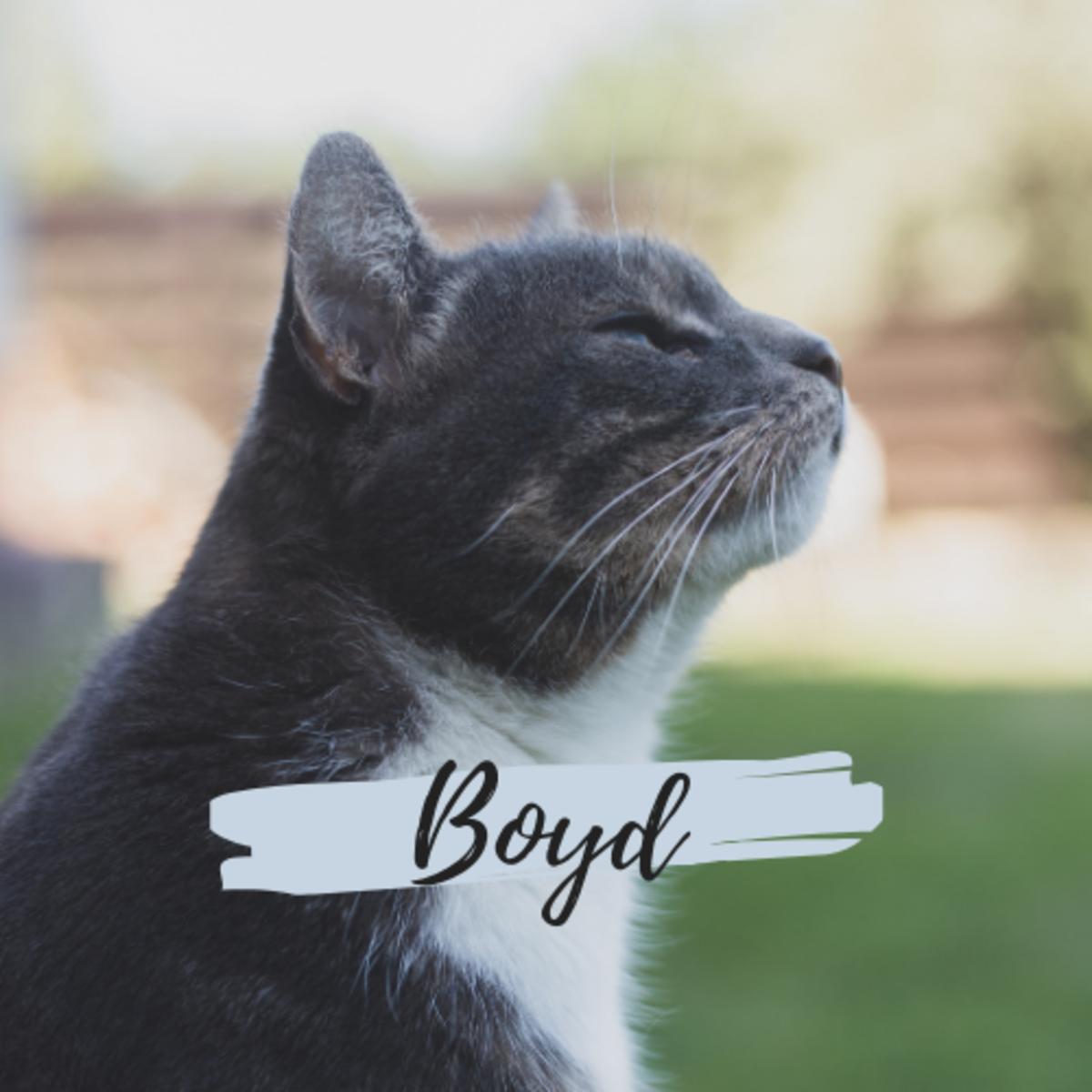 Is he a Boyd?