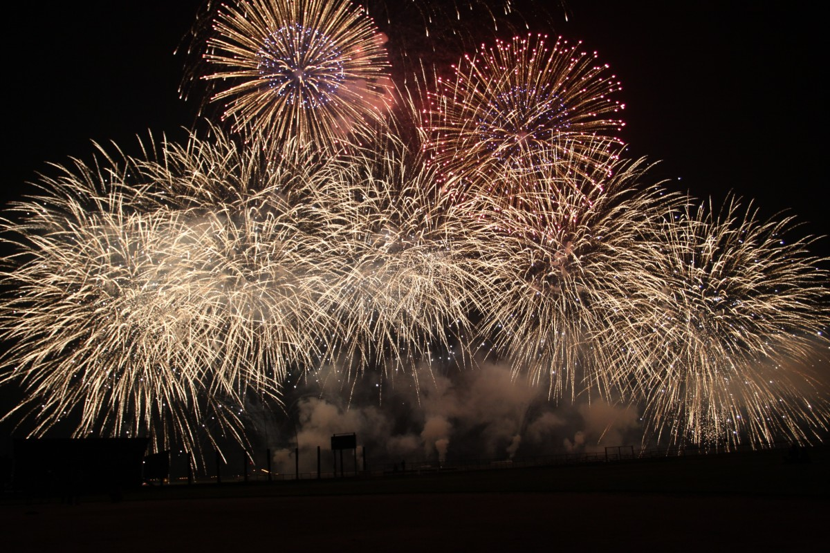 Fireworks can be a huge source of stress for many dogs.