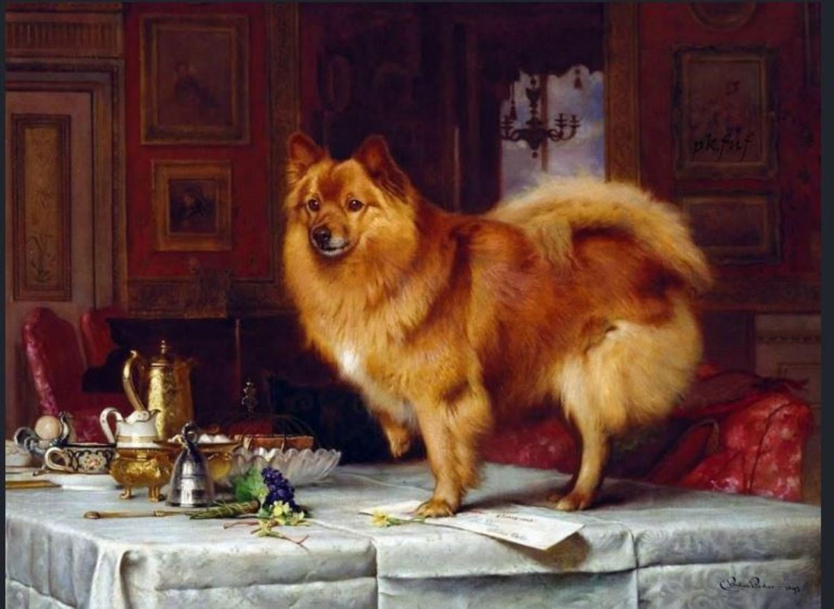 Marco on Queen Victoria's Breakfast Table by Charles Burton Barber, 1892