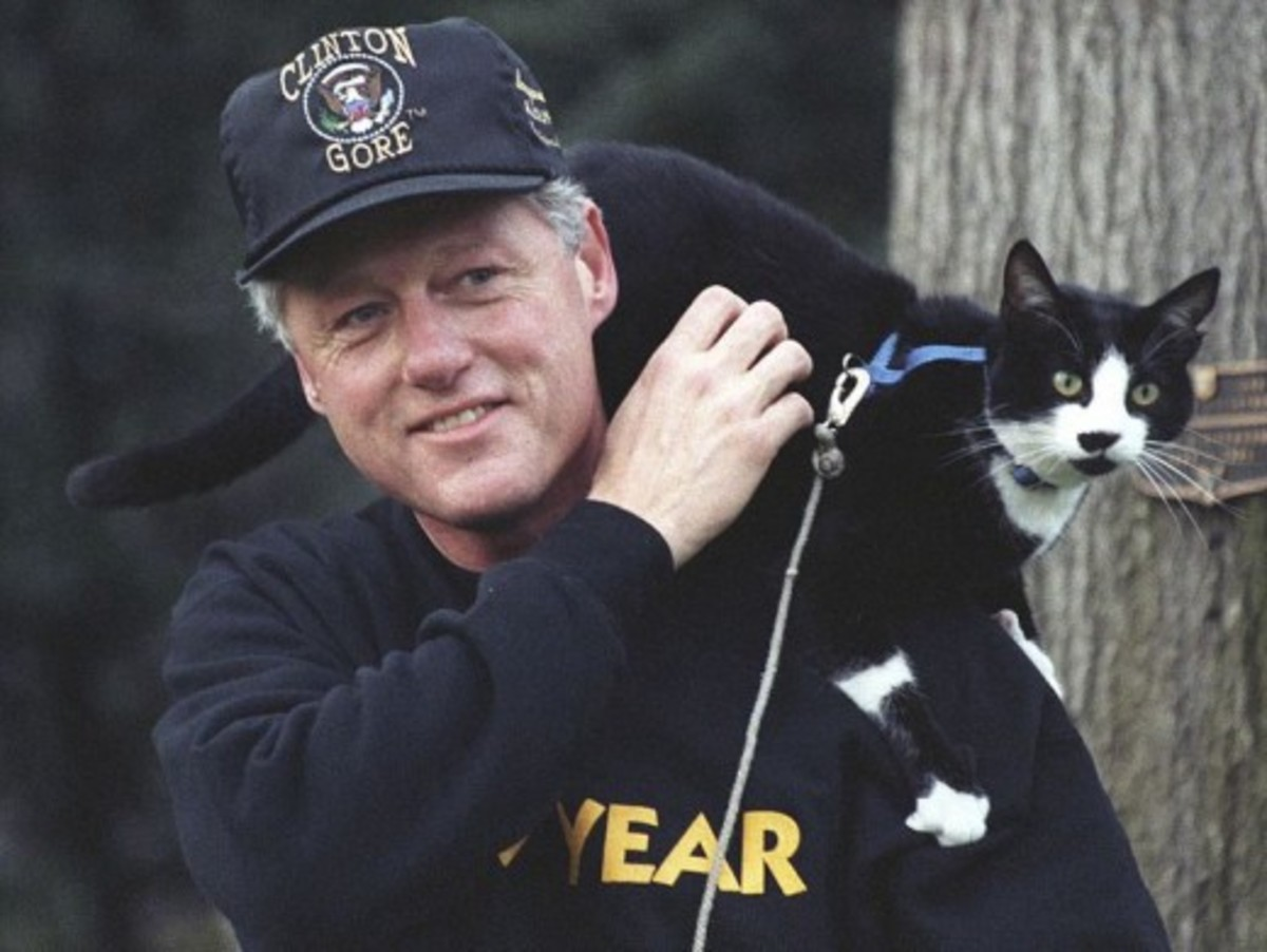 """Socks perches on President Clinton's shoulder in 1993"""