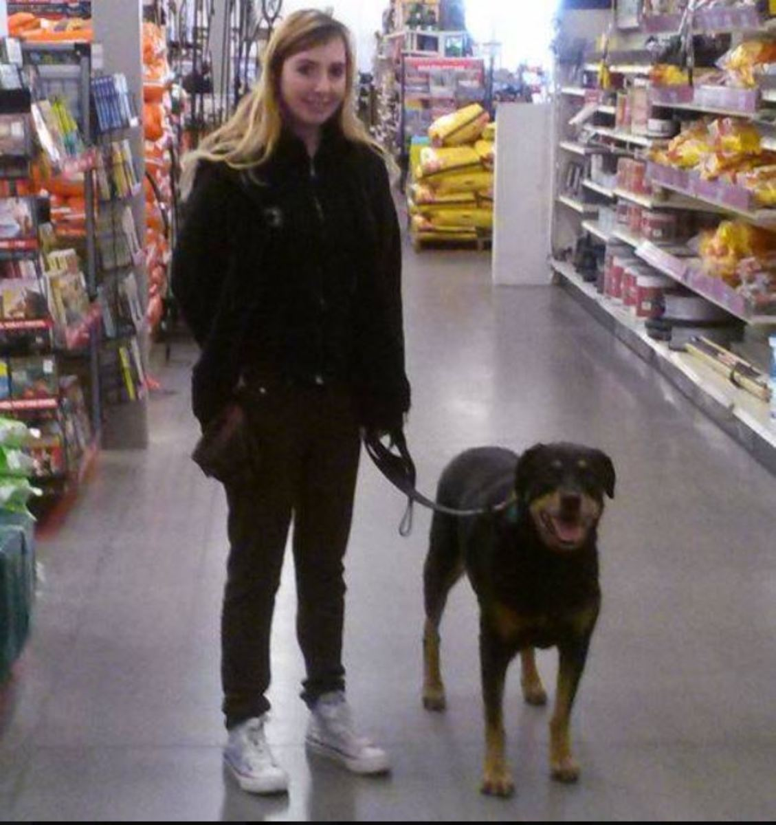 Walking on a loose leash along the aisles of a pet store.