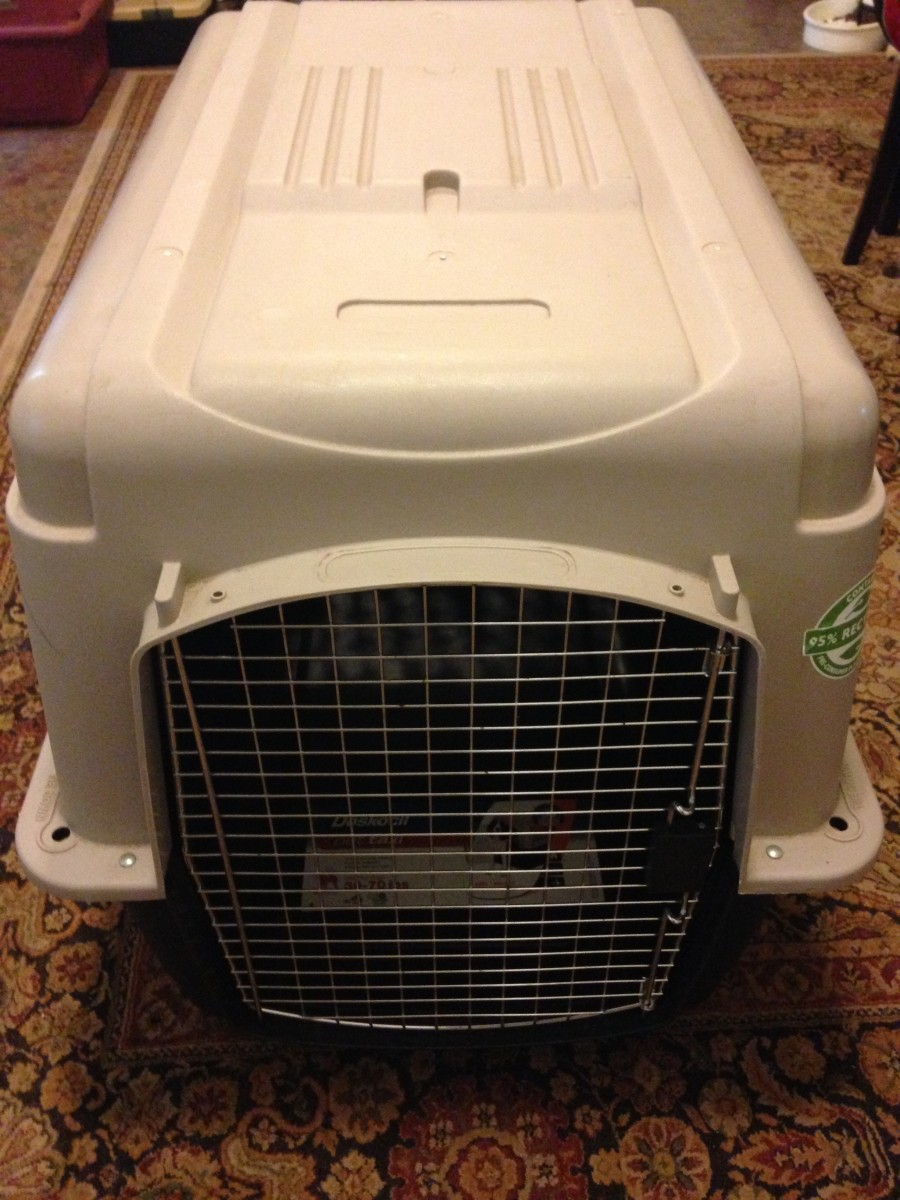 Mesa's 700 series dog crate - used for travel to Panama, Central America and back