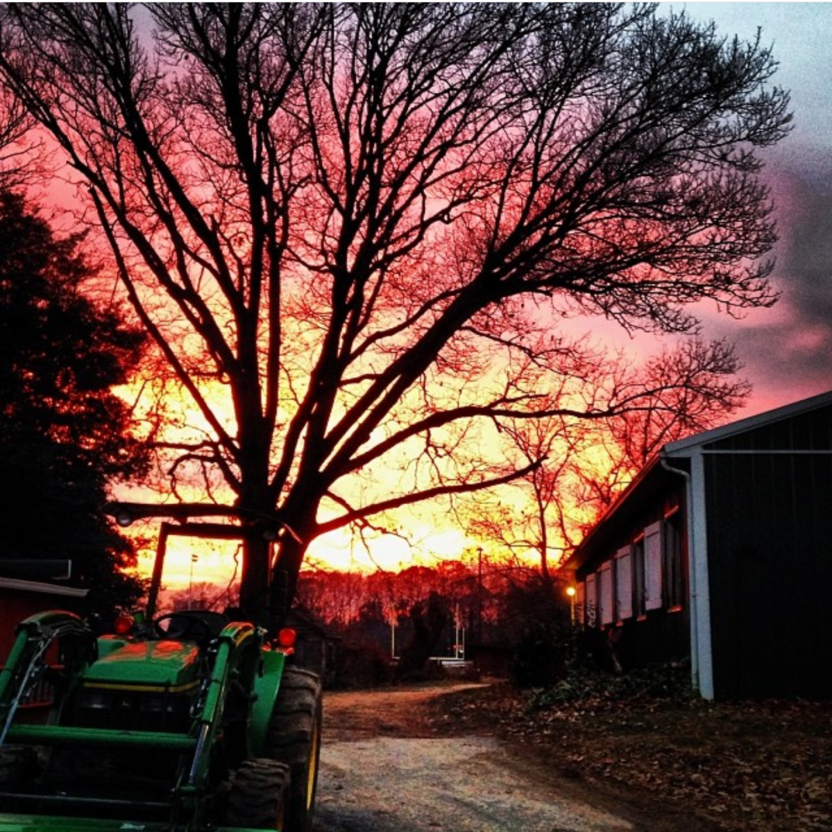 """You know what they say """"red sky at night sailors delight, red sky at morning,sailors take warning"""""""
