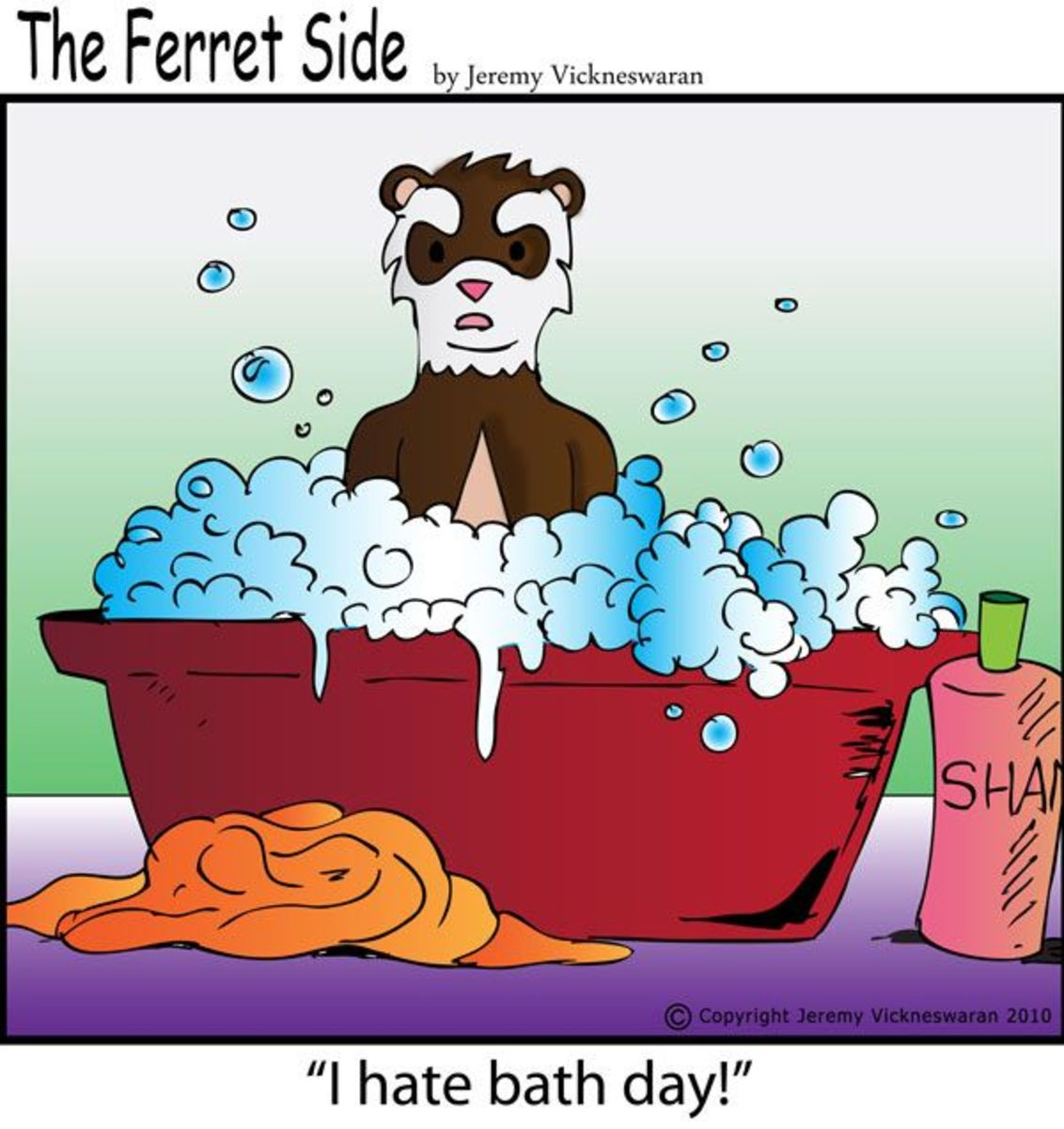 bathing-your-ferret-the-adventure