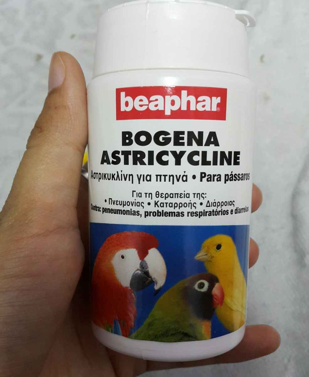 This was the antibiotic the vet had prescribed for lovebird, Lulu.