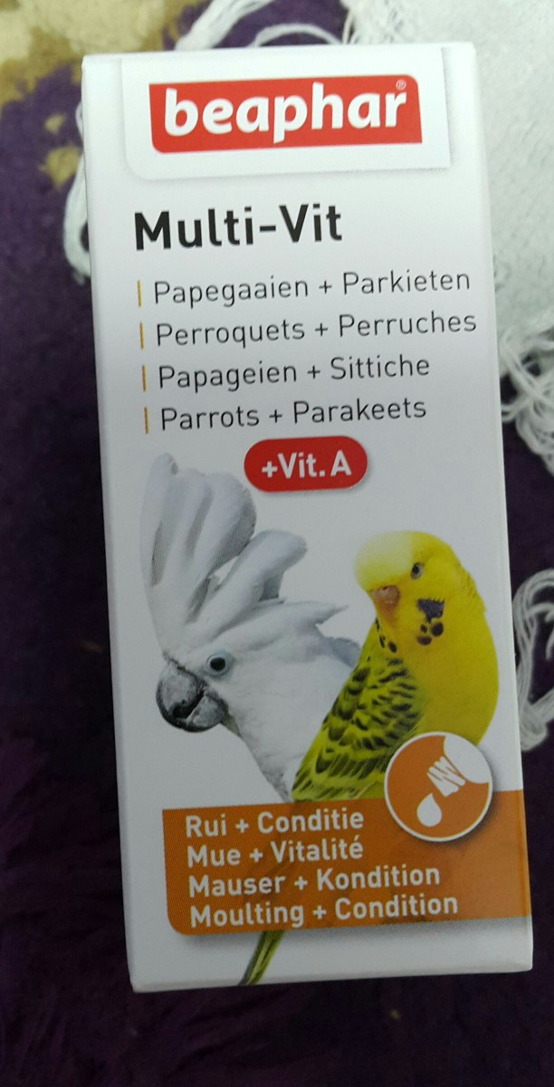 This was the multivitamin bottle the vet had prescribed for my lovebird, Lulu.