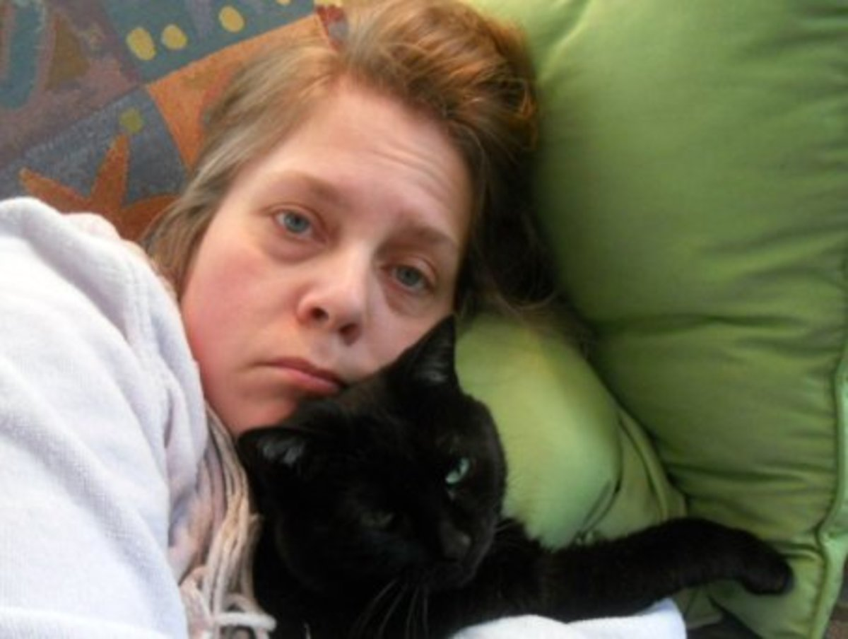 This lady smartly stayed home, attended by her cat, Lucy.