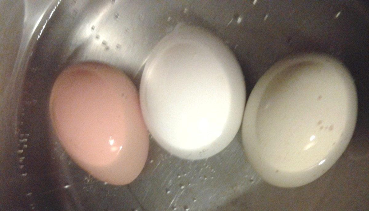A few of the eggs from our girls that we've enjoyed in a salad.