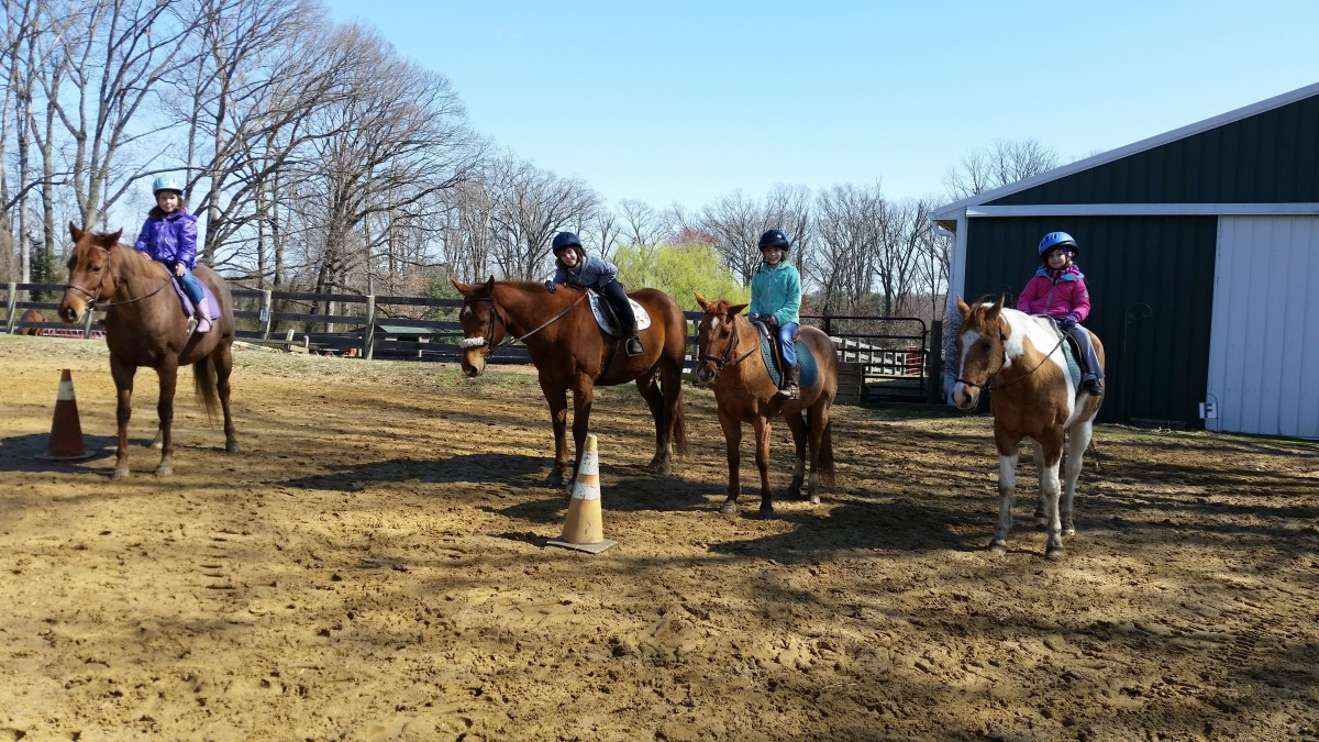 Take advantage of riding in group lessons or watching others ride to help see what right and wrong looks like.