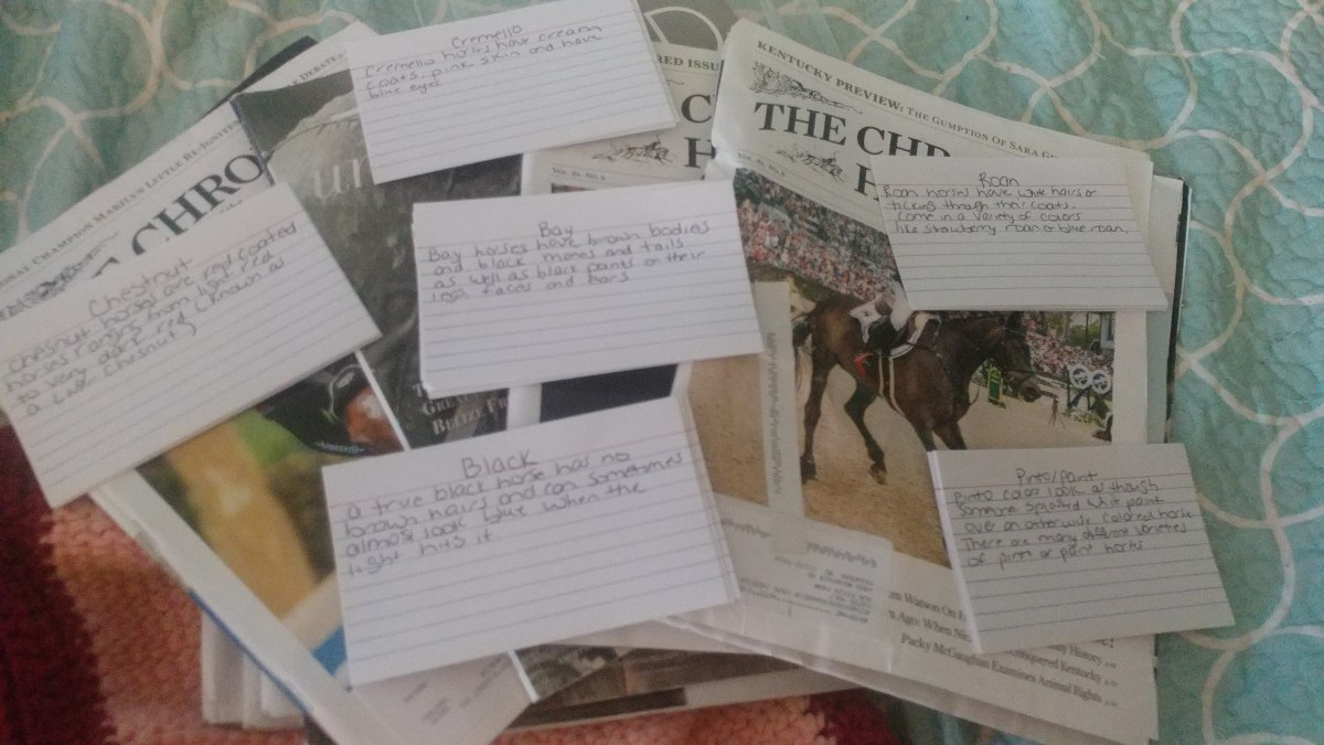 I have index cards with the color and color definition written on them. The kids will use the old horse magazines to cut out a horse of each color and glue it on the front of their card.So the finished product is horse color flash cards.