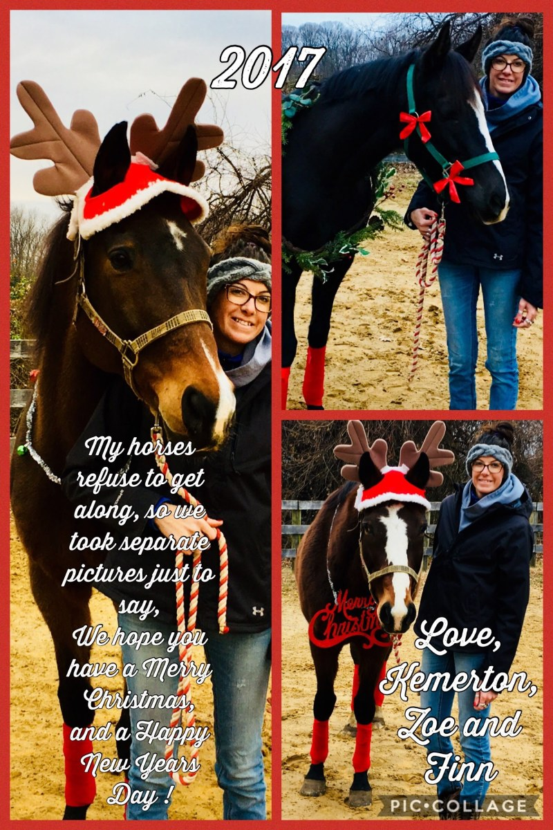 Last years Christmas Photos with my horses!