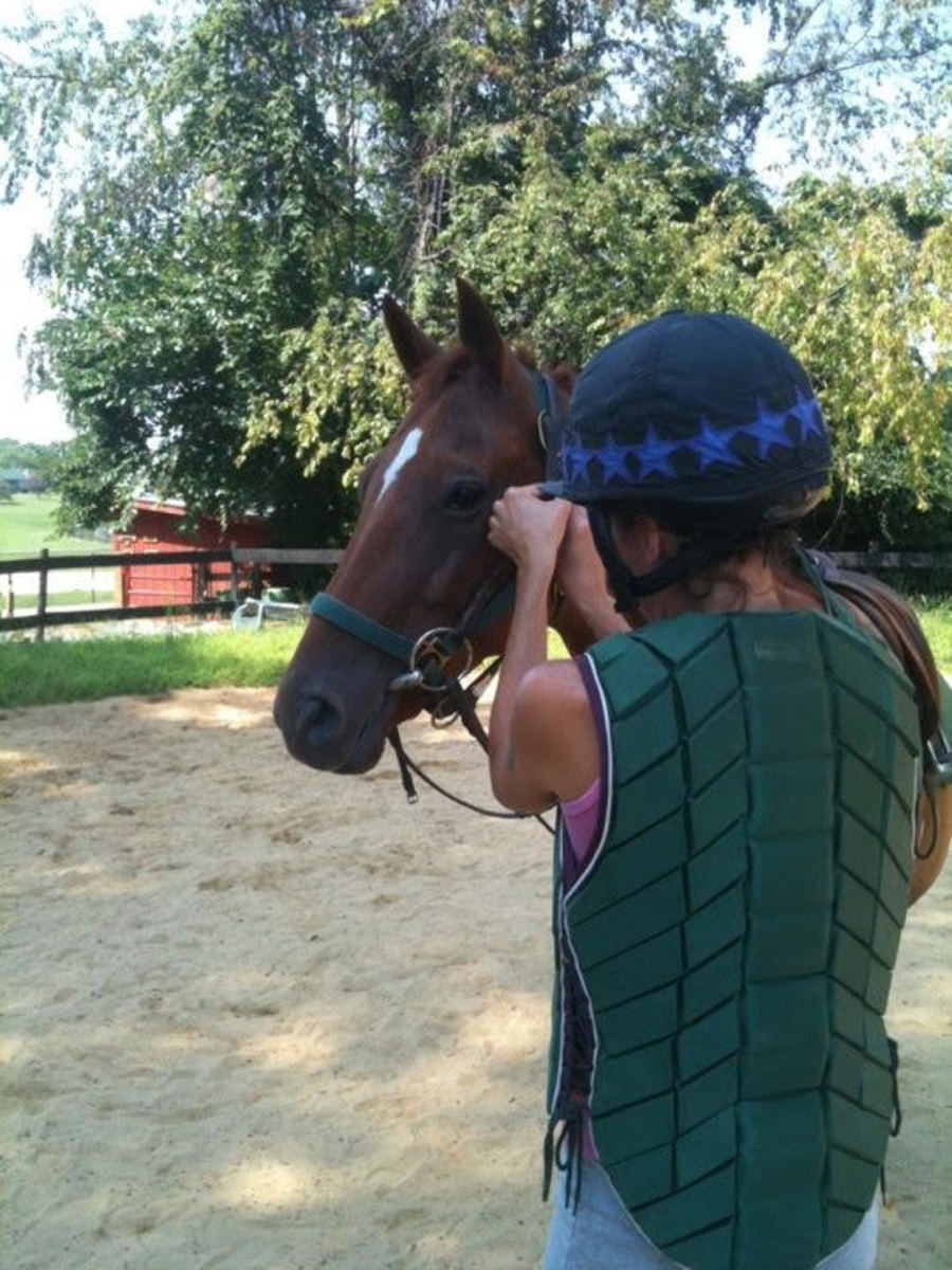 Proper helmet fit for you is just as important as properly fitting tack on your horse!
