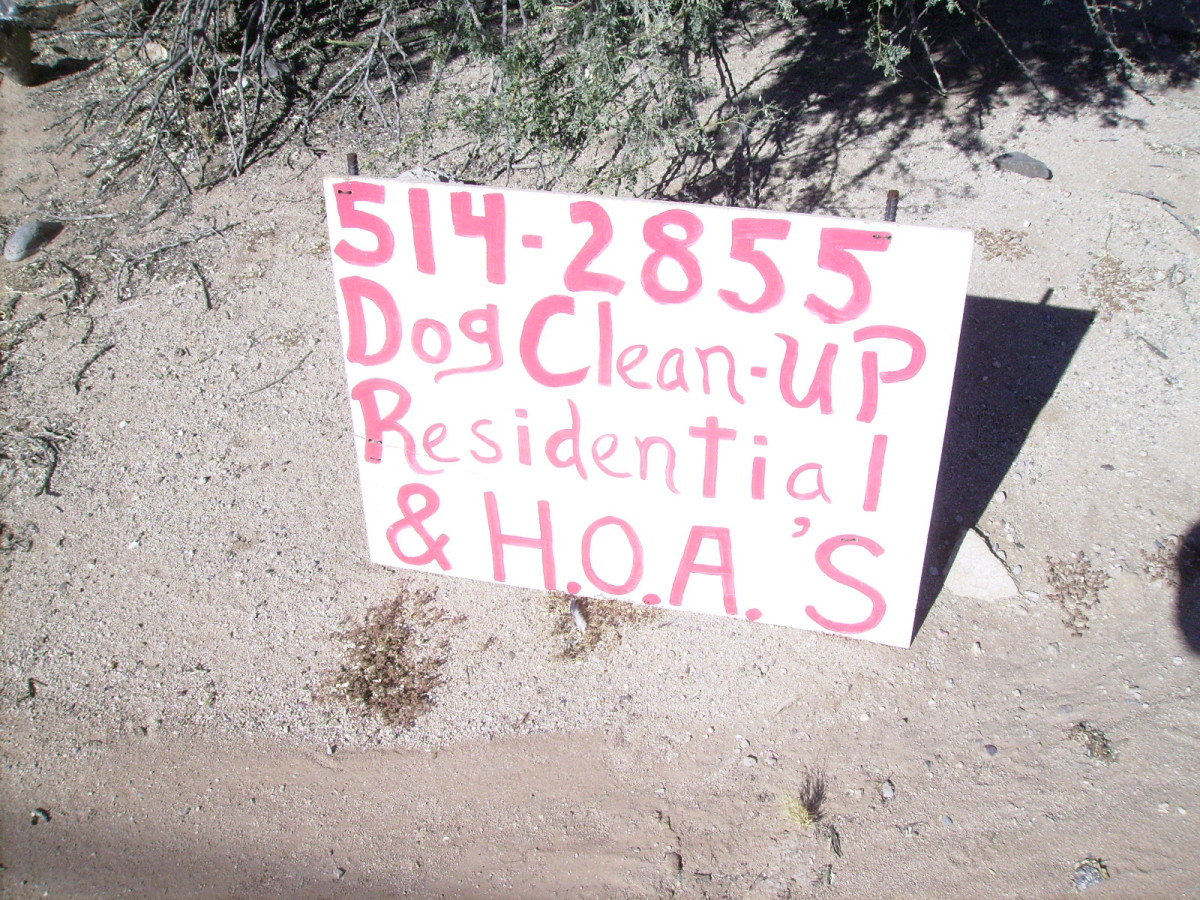 Dog Cleanup: A part-time job created by the need to clean up after our dogs.