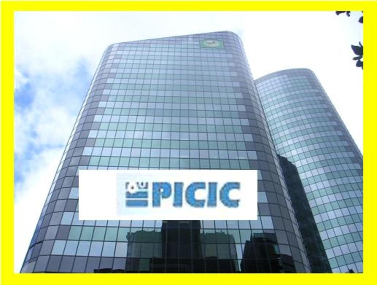 PICIC was once a premier development in Pakitan but has merged with a commercial bank.