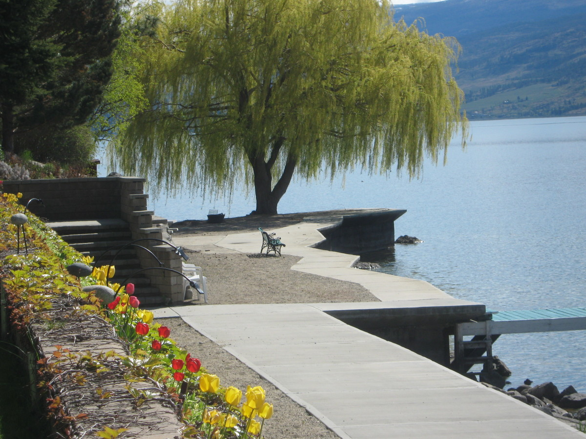 Waterfront property is always desirable but it can be expensive. Even if you can't afford to live right on the water, you can still move into a neighborhood that allows good public access to beaches, parks and fresh green spaces.