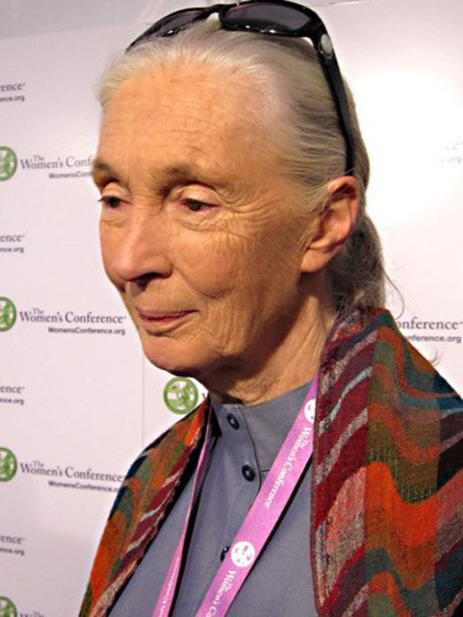 Jane Goodall at the Womens' Conference, 2010