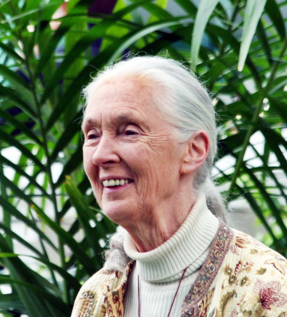 Jane Goodall as Grand Marshall at the Tournament of Roses Parade, in 2012.