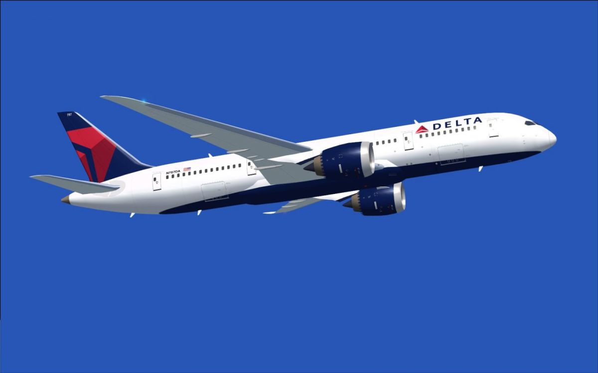 Delta Airlines: A Machine Bureaucracy