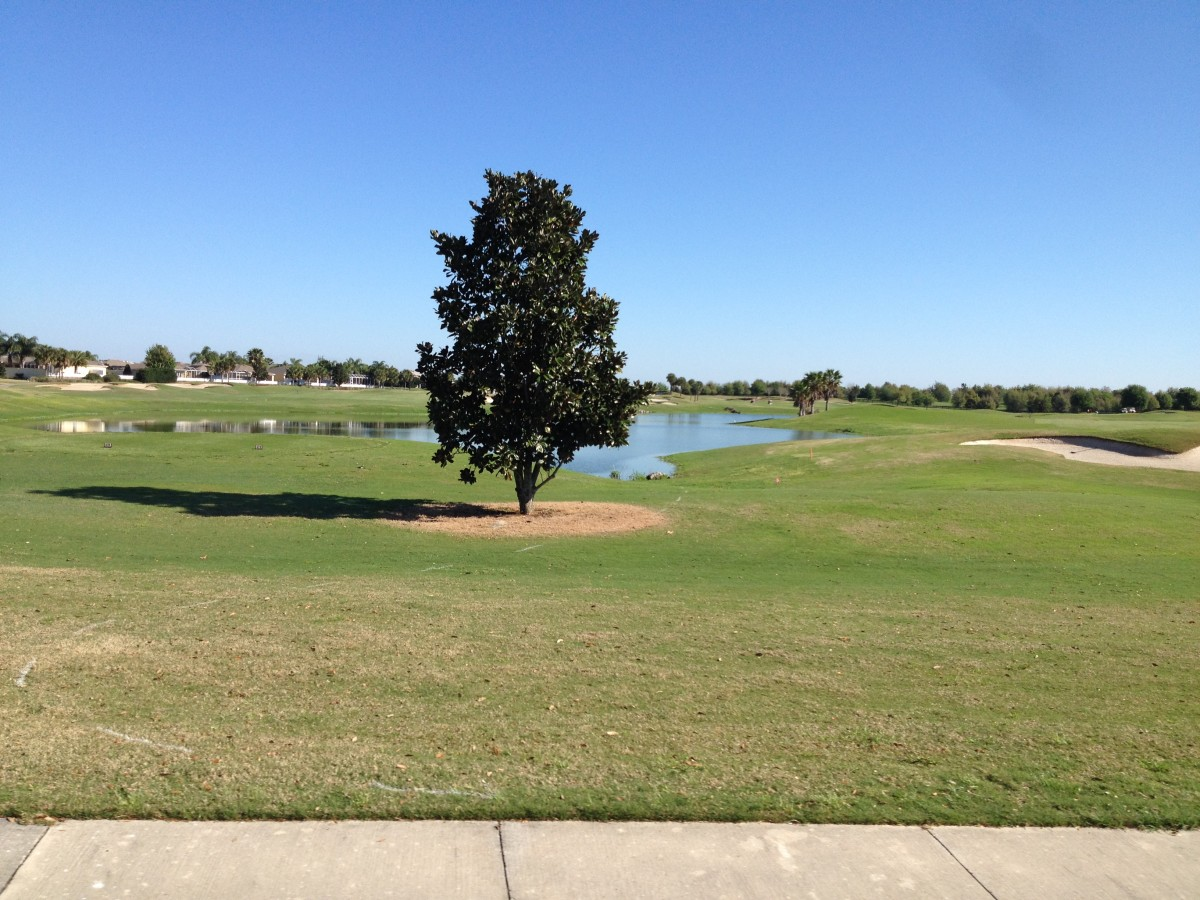 There are certainly plenty of leisure and sports options in The Villages, particularly if you like golf and tennis. Most facilities are very easy to access by golf cart. Swimming pools are also plentiful.