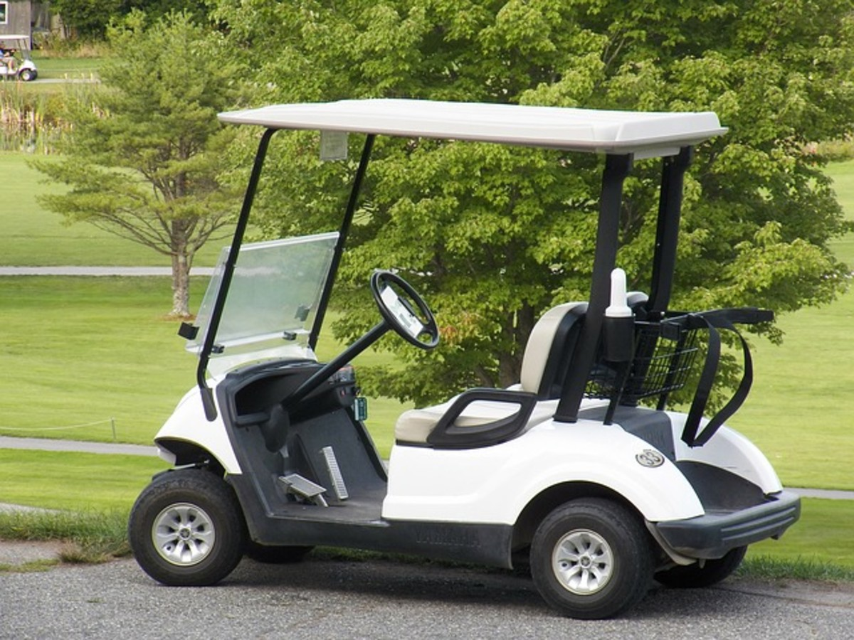 The golf cart is the preferred method of transport for many in The Villages.  Some carts  are street-legal, and some are solar-powered.  There are golf cart lanes for easy and safe driving, and tunnels have been built to cross major highways.