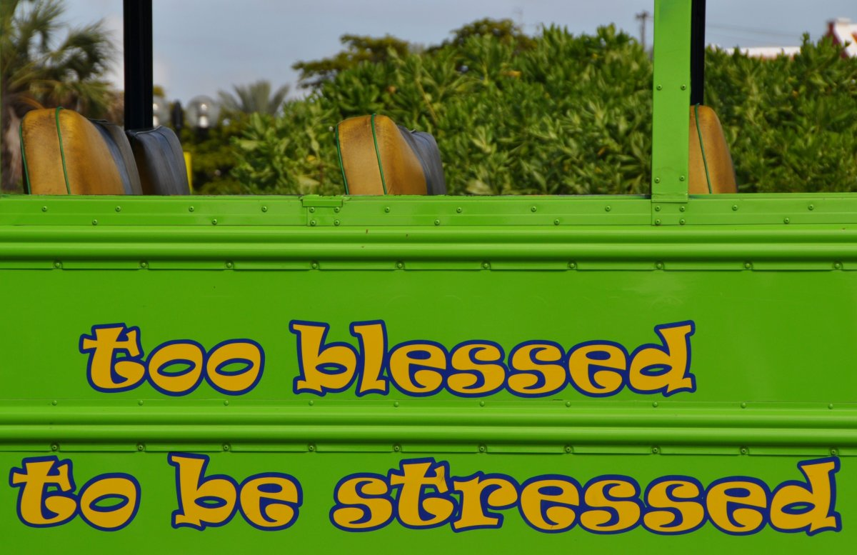 I hope you find a job where you're overjoyed and too blessed to be stressed. If you don't have that now, keep searching.