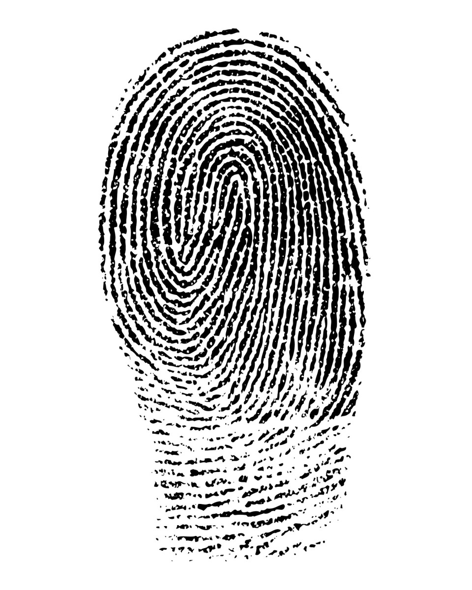 You'll need to get copies of your fingerprints for your FBI criminal background check.