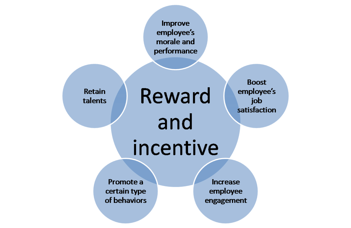 The Use of Reward and Incentive Systems: A Case Study of