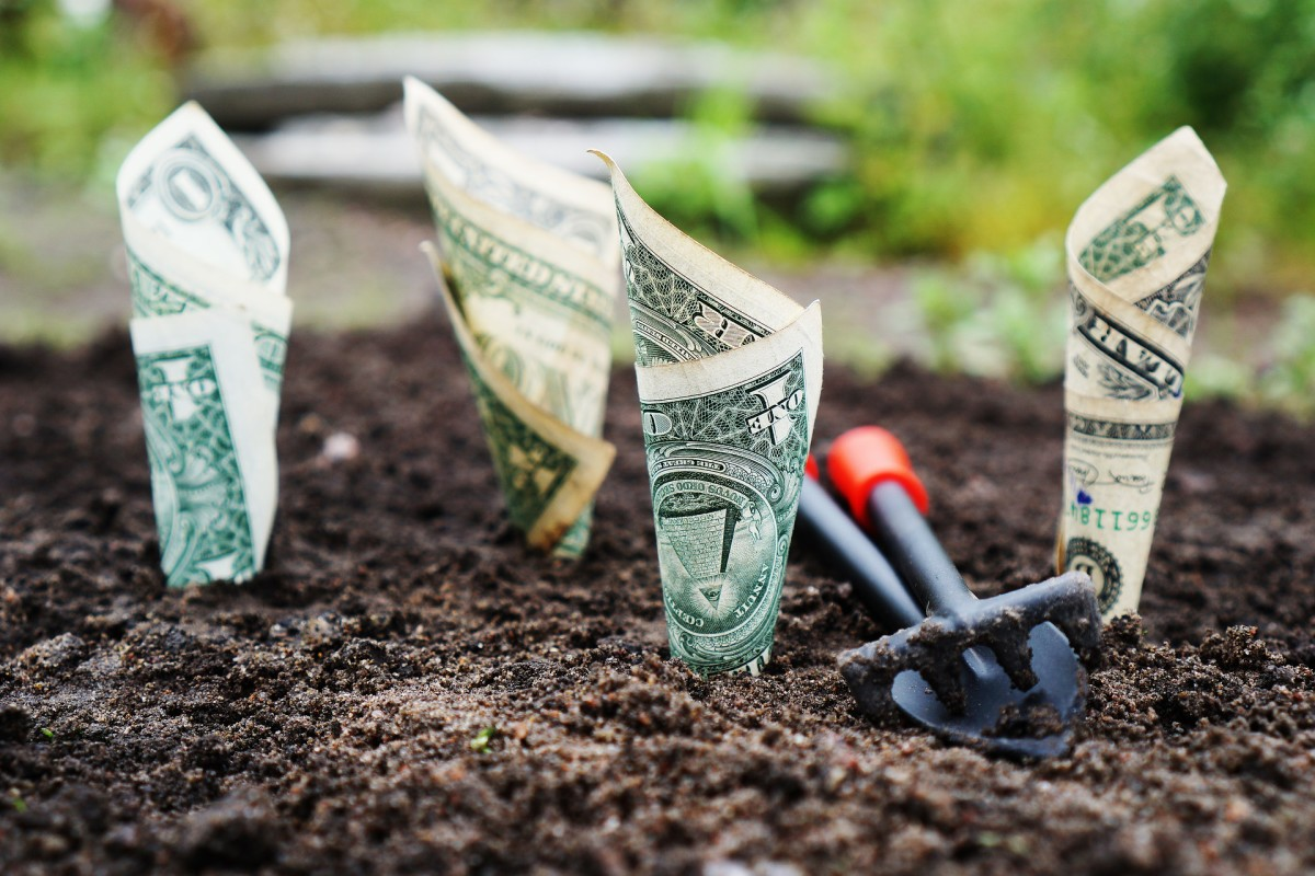 Writing articles for a revenue sharing site is kind of like planting seeds in someone else's soil. They did a lot of the hard work for you by maintaining the land and laying out all of the manure, so you'll have to give them some of your harvest.