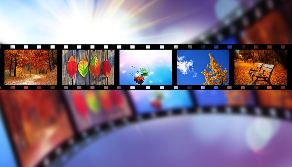 Put your film expertise to use by writing movie reviews online.