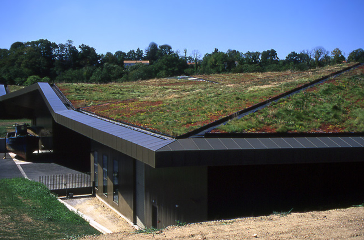 A new green rooftop in Oakland, California.