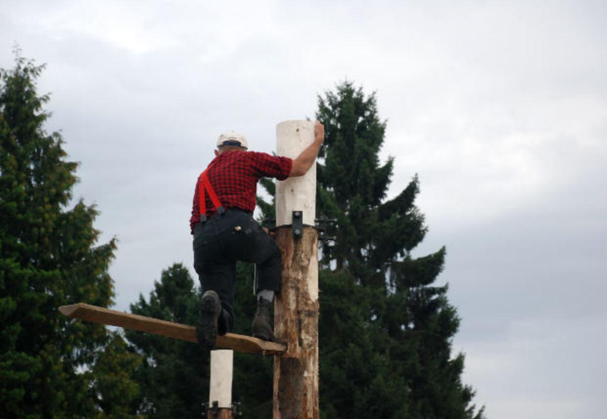 Logging; Lumberjack