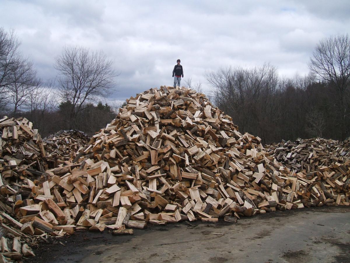 Free Firewood Heaven!