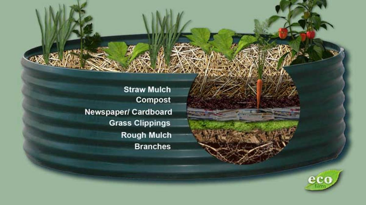 How to make a raised garden bed.
