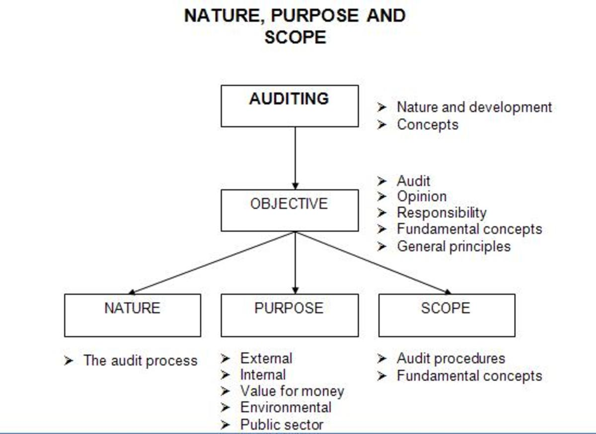 A flow chart explaining audits.