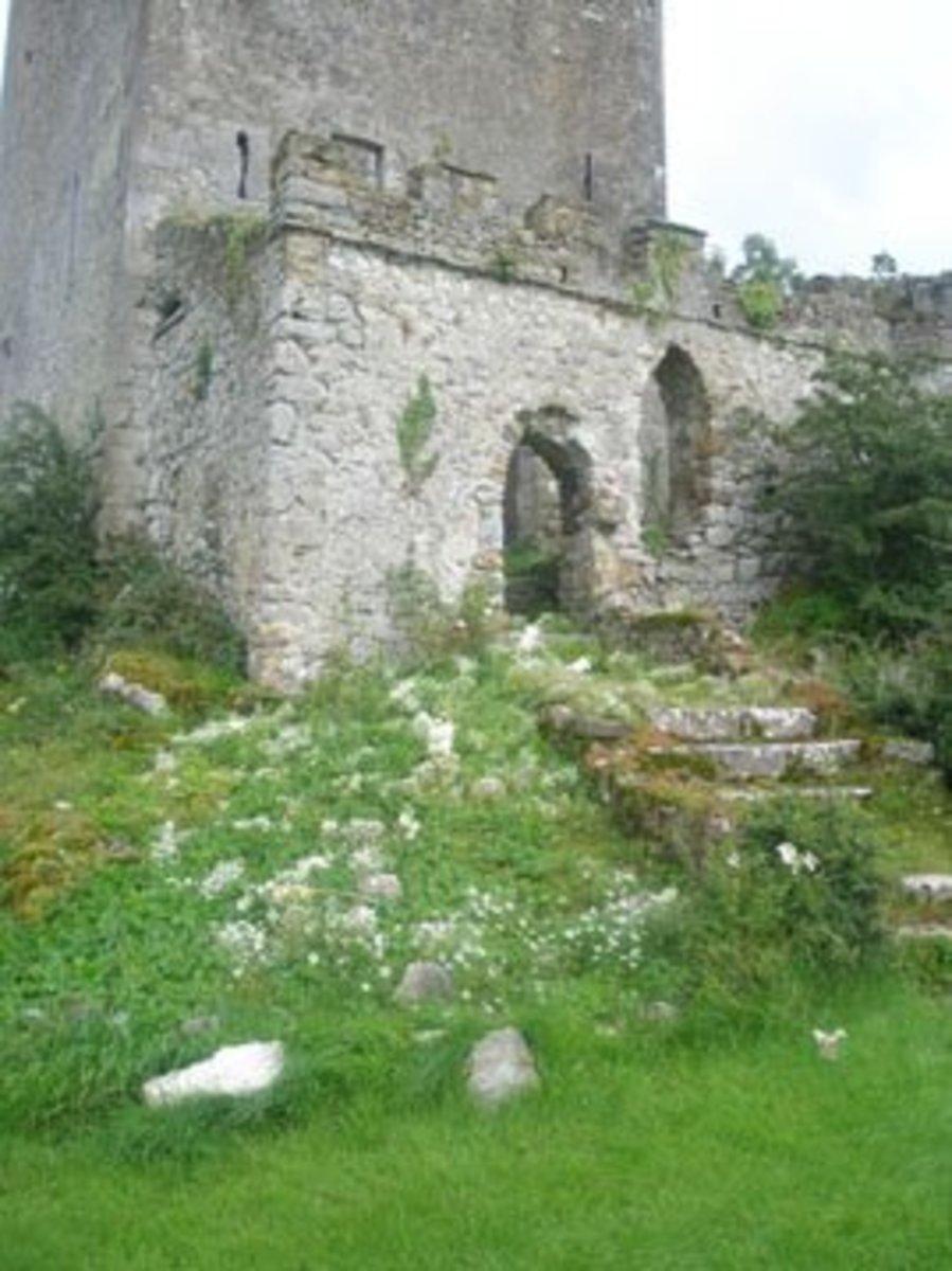 Clonony Castle Entrance