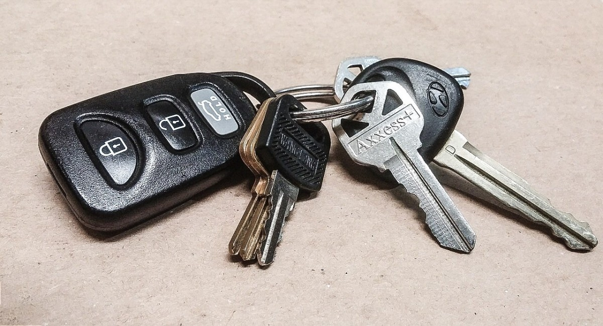 New car keys are an exciting acquisition.