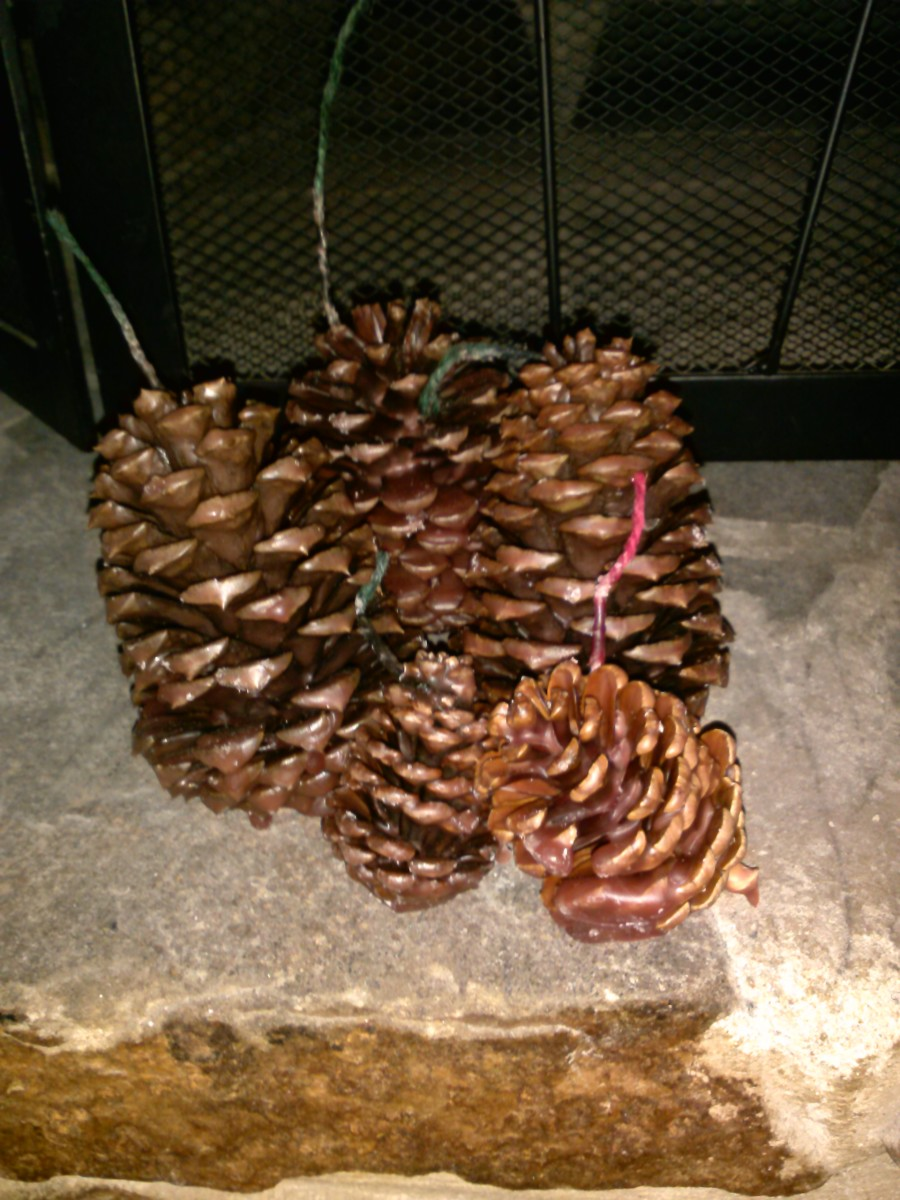 Wax-coated pine cones