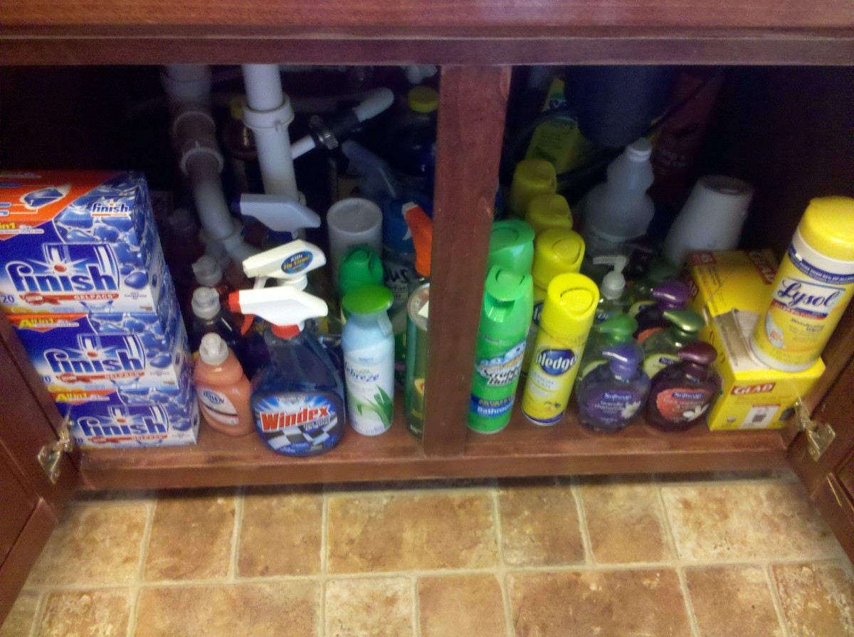 All these cleaning products were $1.00 or under so I had to stock up!