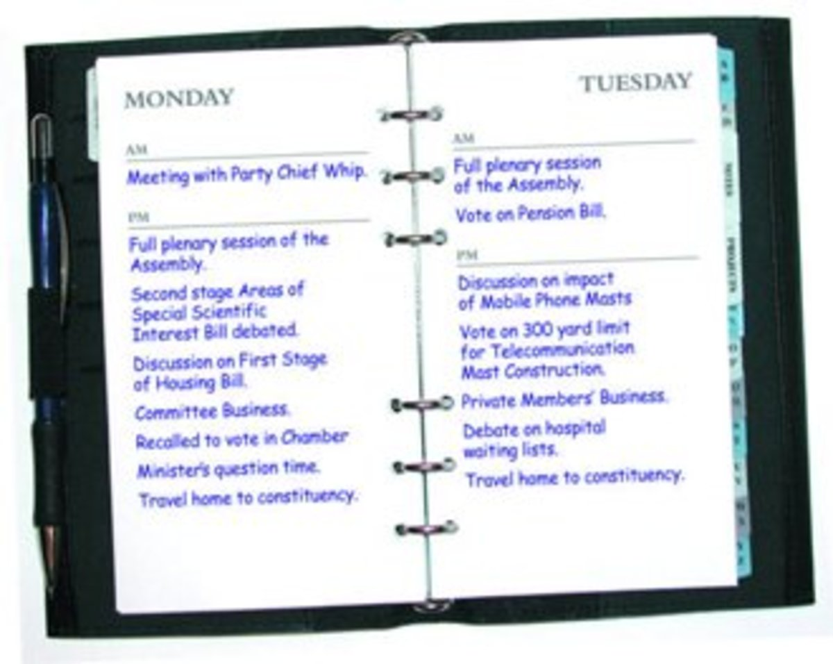 An example of a manual diary.