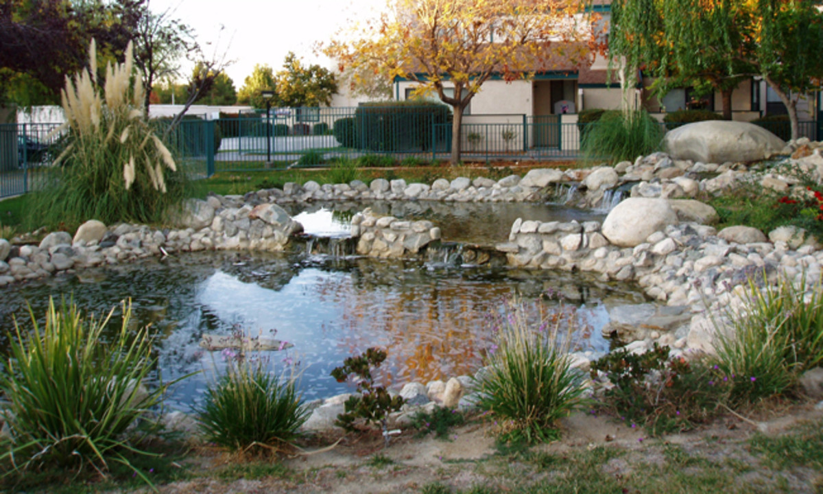 Hire good landscapers: This pond was one of the prettiest features of a potentially wonderful landscape where I used to live. The quality of the landscapers made a 100% difference.