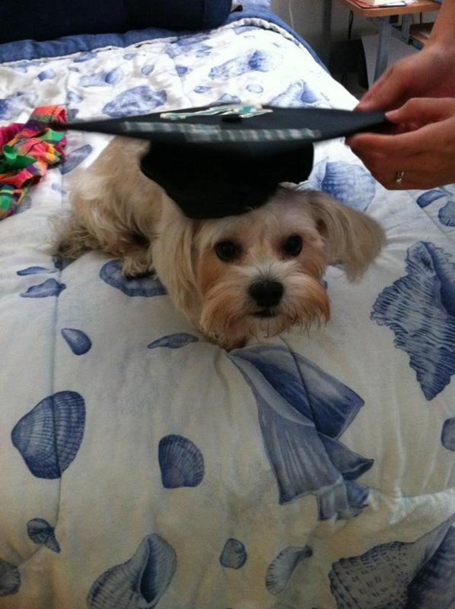 Bailey went through all four years of her Mom's college life.