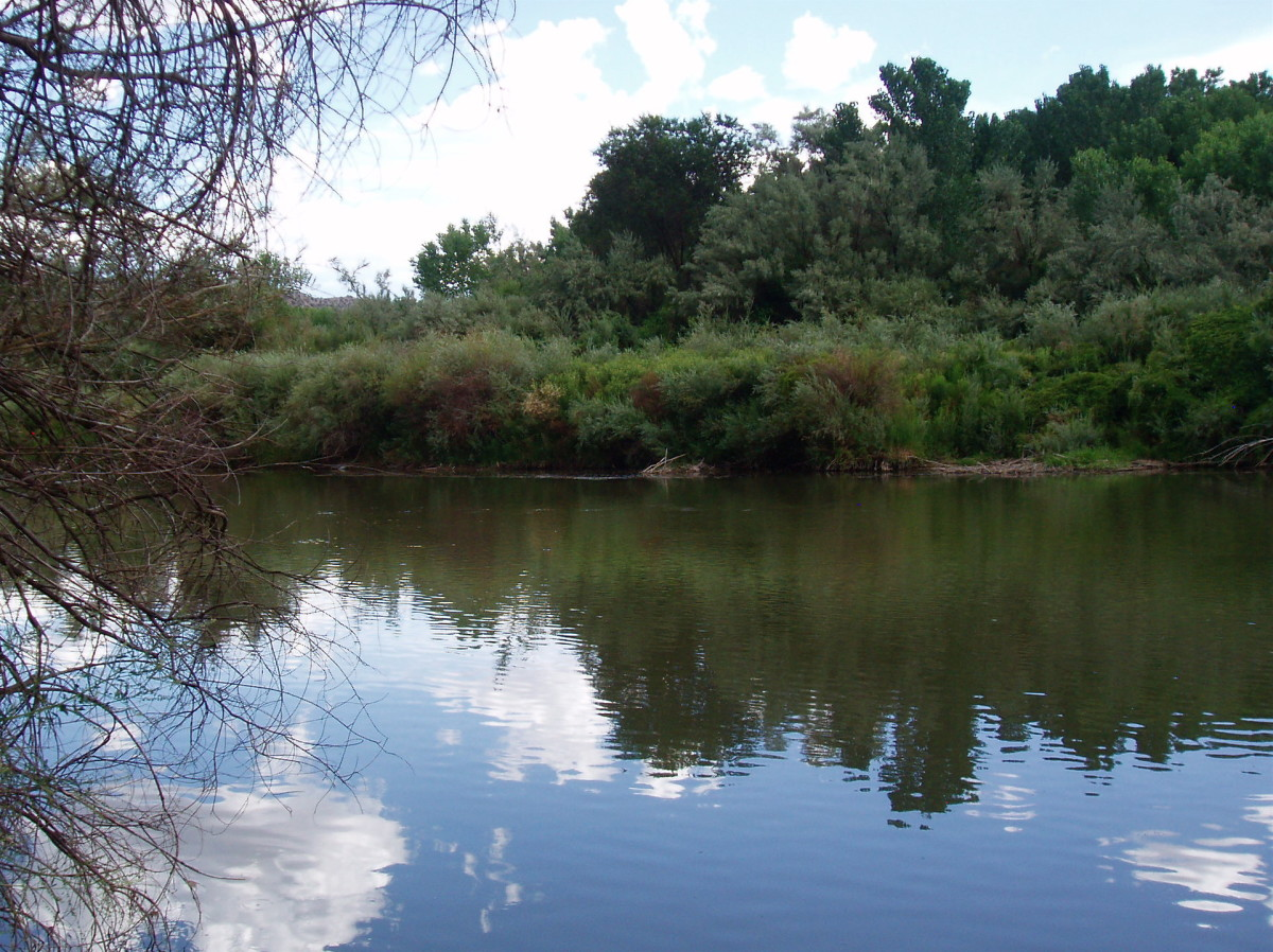 Peaceful scenes like this are what make buyers choose homes in areas that might actually be quite dangerous. This is the Rio Grande River.