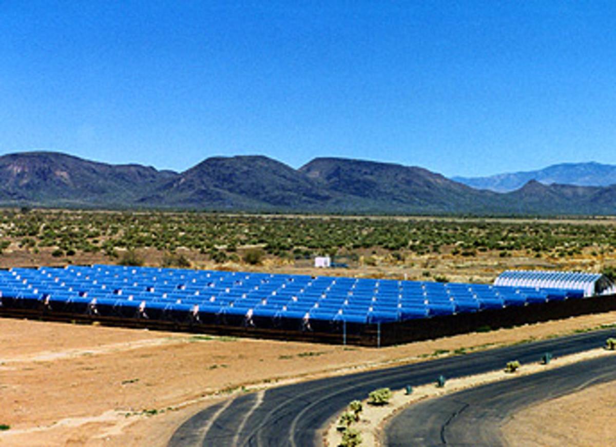 Solar panel field in Phoenix.