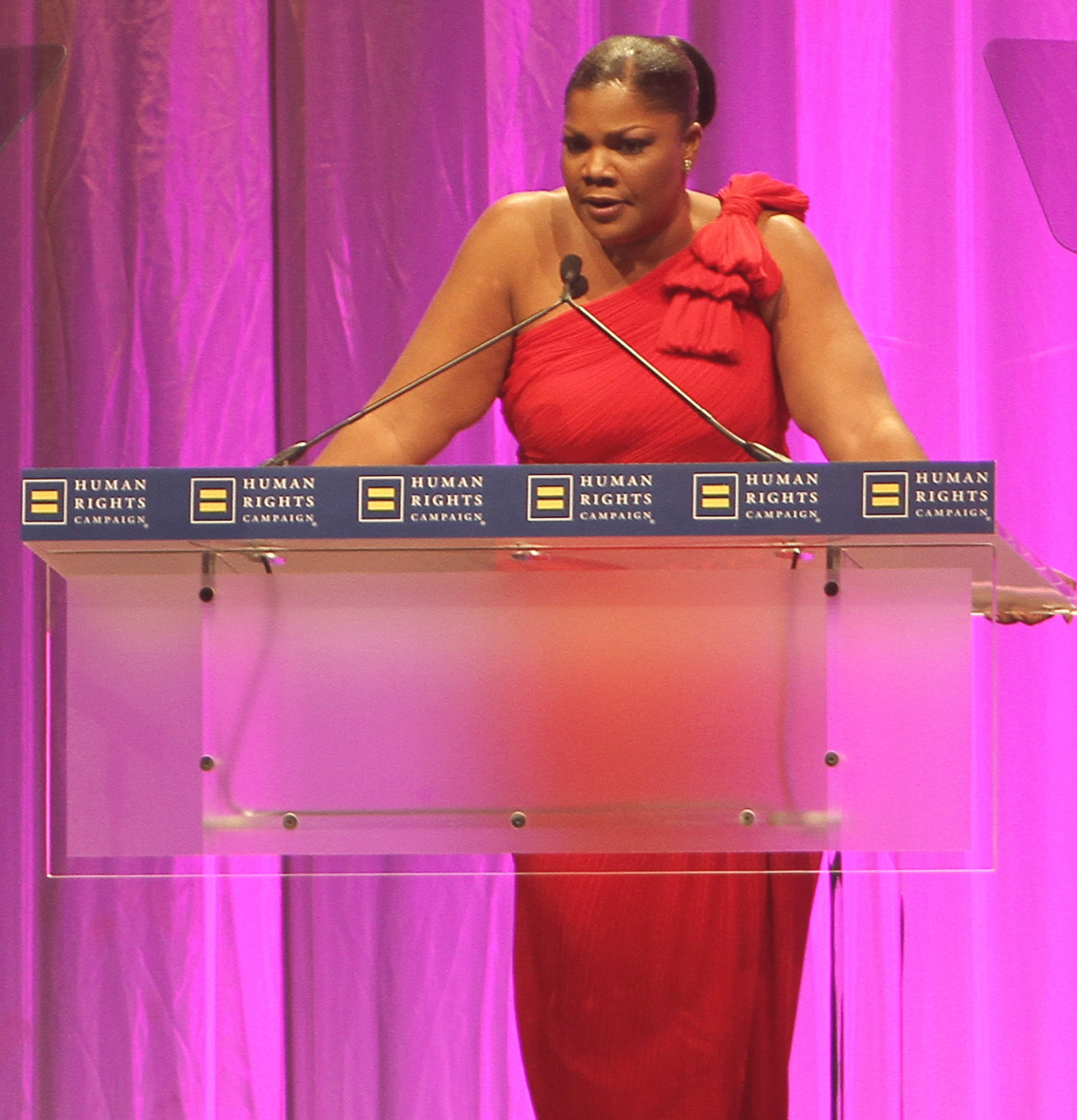 Academy-Award winning actress, Mo'Nique, at the 2010 Human Rights Campaign National Dinner in Washington, DC.