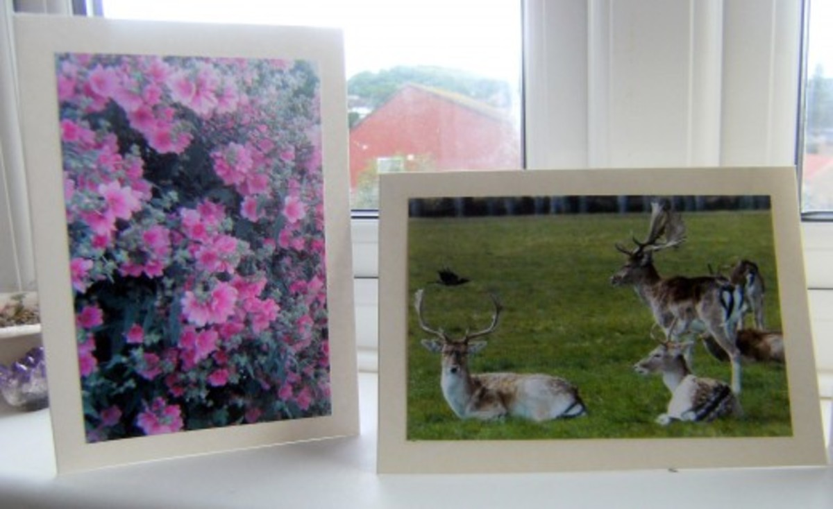 How to Make and Sell Greeting Cards with Photos