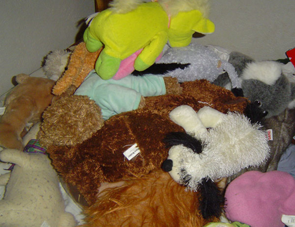 Whether or not you can, we're not lacking in stuffed animals.  The fraction of them shown here is enough to hide a small child underneath!  I think they all have names, but I don't know all the names.