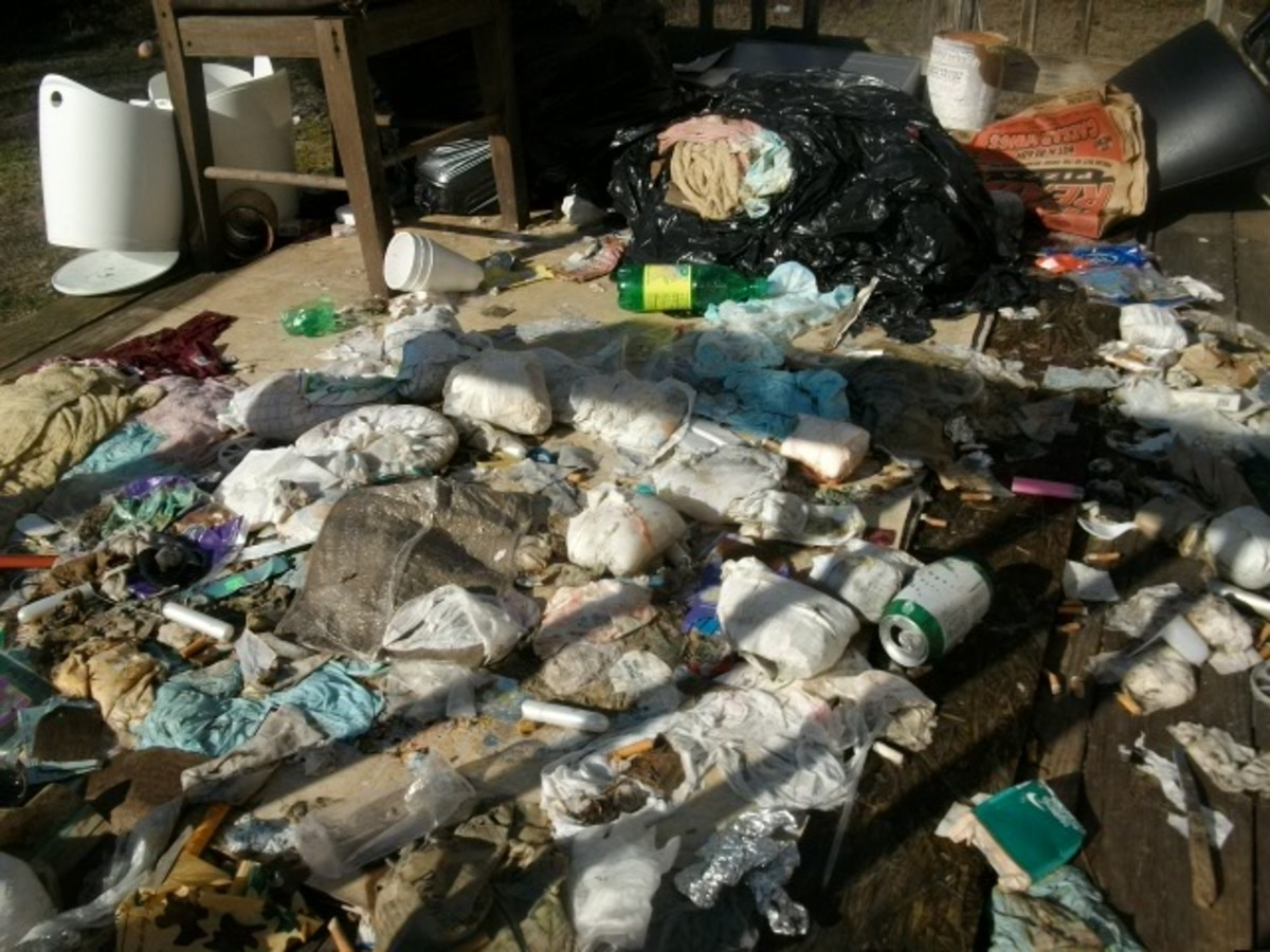 Typical Debris at a Foreclosed home